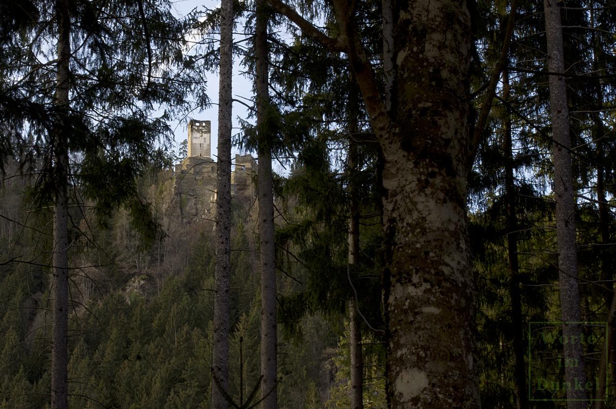 Blick durch die Wälder zur Ruine