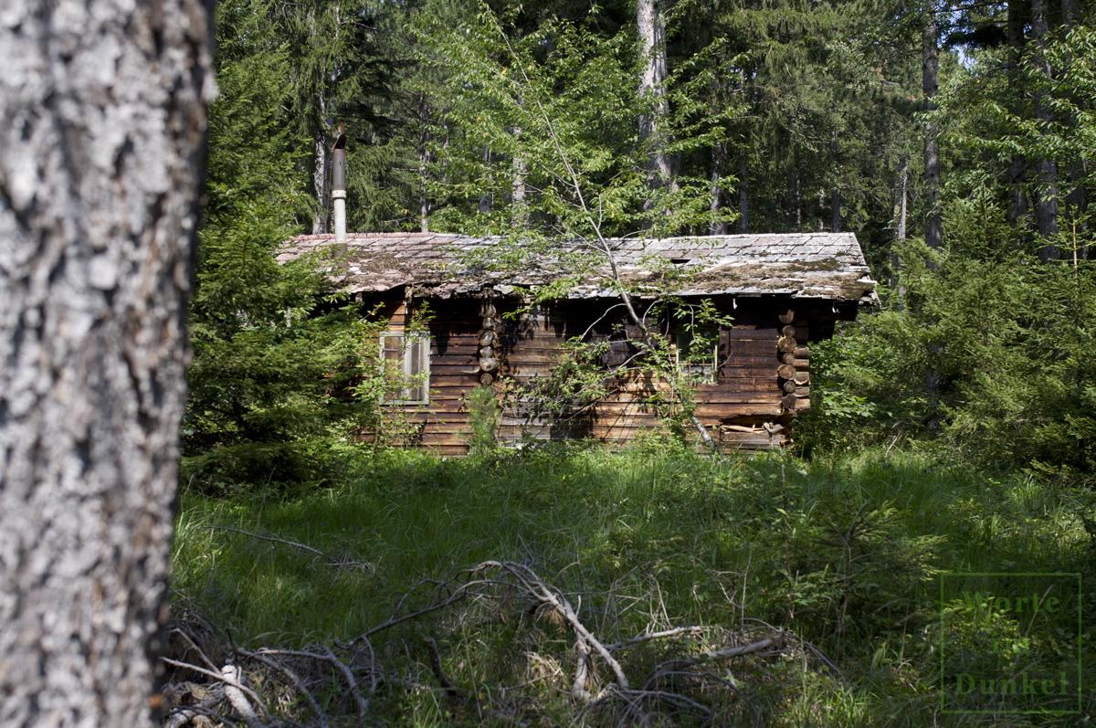 Tief im Wald steht die Hütte mit den Hinterlassenschaften der beiden Soldaten.