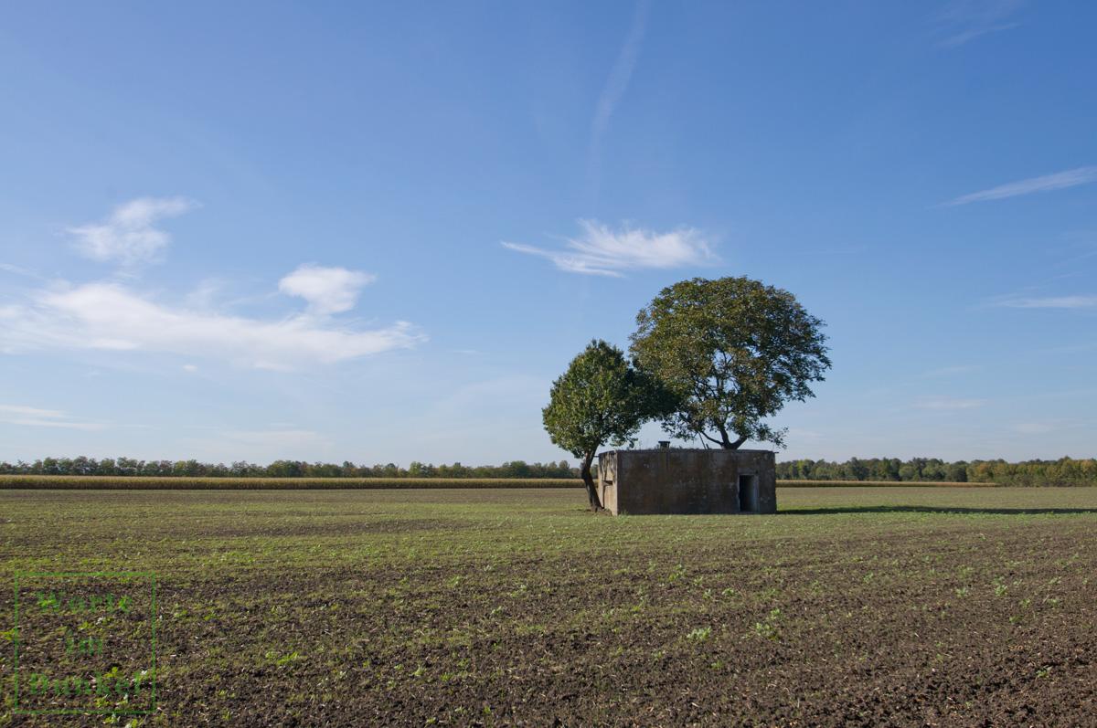 Die Bunker liegen heute inmitten landwirtschaftlich genutzter Flächen.